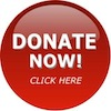 Donate Now Button red
